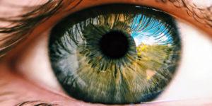 perito oftalmologo